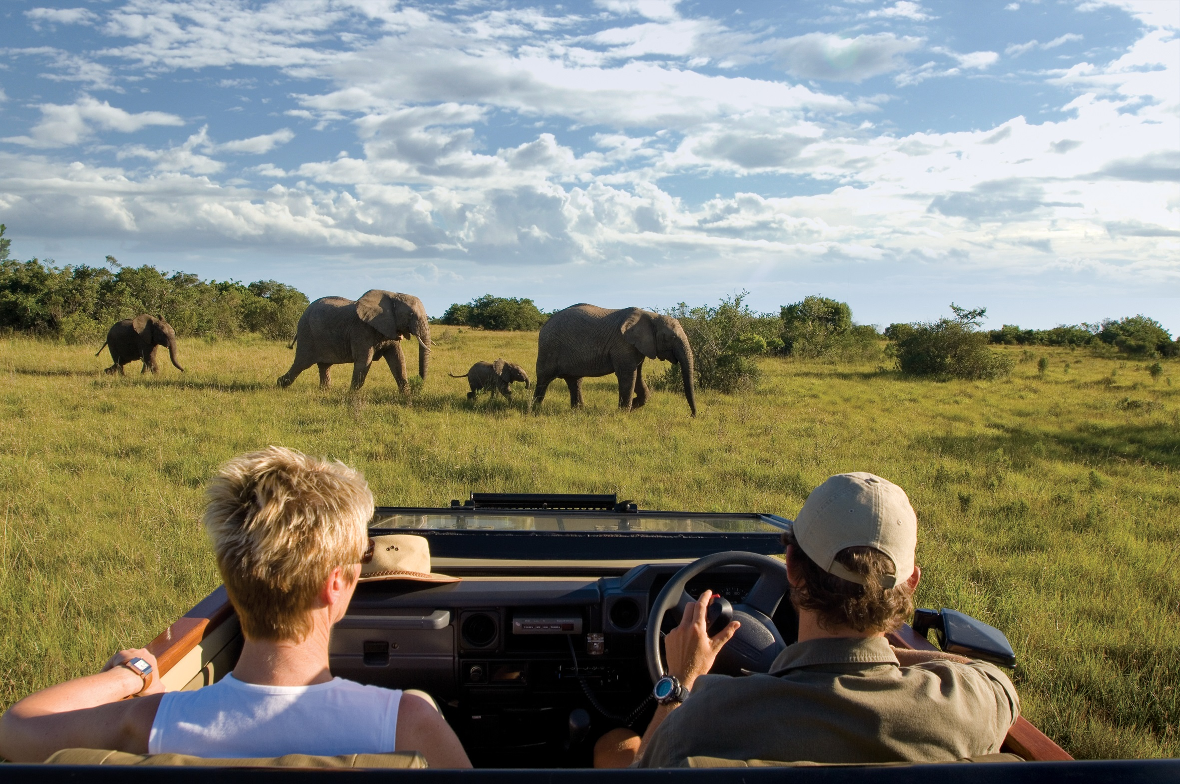 Lalibela Game Reserve - Ranger and guests viewing elephants