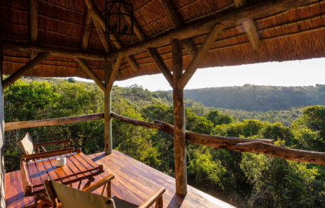 Lalibela Game Reserve - Tree Tops - Private viewing deck