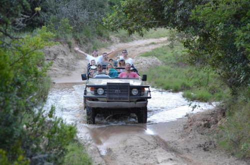 Guest game drive