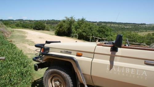 Lalibela Game drive vehicle